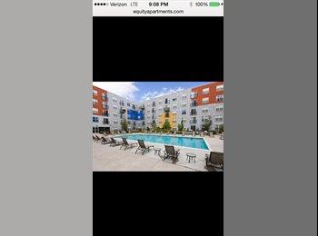 Beautiful apartment at ball park lofts