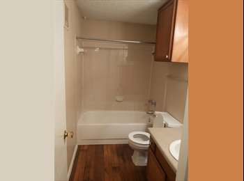Single bedroom Apartment for sharing at Fort worth Center...