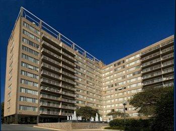 EasyRoommate US - Spacious Modern Studio in Arlington! - Arlington, Arlington - $1,530 pcm