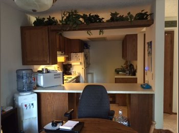 EasyRoommate US - I have a large furnished bedroom available Sept 1 - St Louis Park, Minneapolis / St Paul - $800 pcm