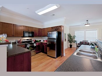 EasyRoommate US - Apartment room at the Republic at Denton  - Other-Texas, Other-Texas - $675 pcm