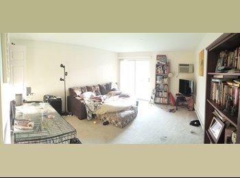 $1157 / 878ft2 - Room for rent in a 2bd 1ba 878sqft apt...