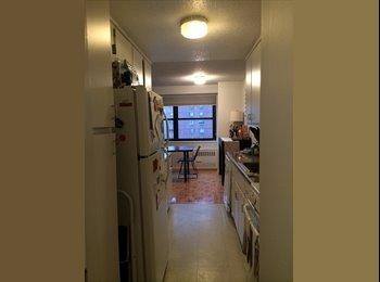 EasyRoommate US - Roommate needed in HUGE Gramercy apartment - Gramercy Park, New York City - $2,200 pcm