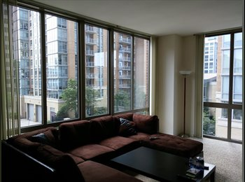 Corner Glass Apartment in Reston Town Center