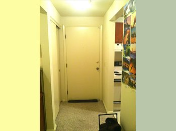 EasyRoommate US - Beautiful, Spacious Studio in Henrietta! Close to Everything - Park Avenue, Rochester - $660 pcm