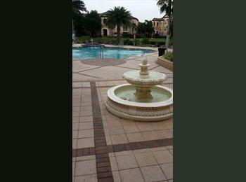 EasyRoommate US - DCBoiNFL - North Tampa, Tampa - $650 /mo