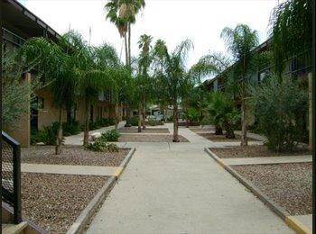 EasyRoommate US - 1BD 1BR - No down payment - Tucson, Tucson - $450 pcm