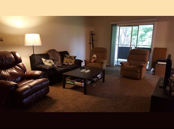 looking for a roommate (MOUNT PROSPECT, IL