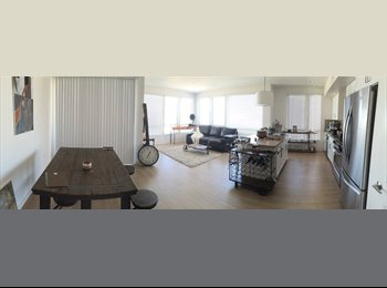EasyRoommate US - North San Jose - $1500 / 1170ft2 - Room for Rent in Brand New Community - San Jose, San Jose Area - $1,500 pcm