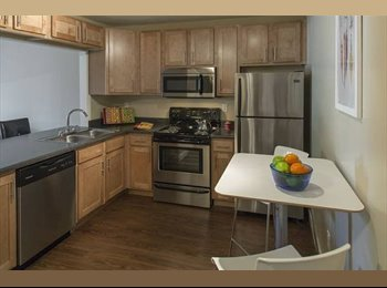 1bedroom/ Pet-friendly/ Newly Renovated