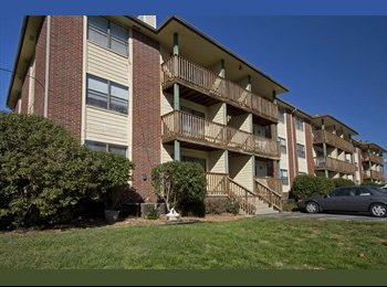 EasyRoommate US - Single room with private bath - Springfield, Springfield - $555 pcm