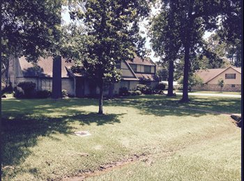 EasyRoommate US - Large House here in a Very Quite Area here in Spring - The Woodlands / Spring, Houston - $550 pcm