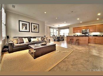 Den in Modern Home