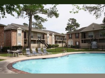 EasyRoommate US - Master bed with private bath - The Woodlands / Spring, Houston - $600 pcm