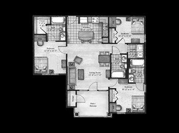 EasyRoommate US - Villagio Apartments!! - San Marcos, San Marcos - $505 /mo