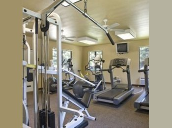 EasyRoommate US - roommate needed in triple at pine tree apartments  - Chico, Northern California - $460 pcm