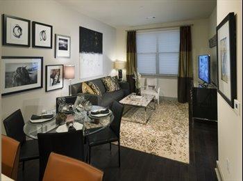 EasyRoommate US - Luxury apartment close to Red Line  - Cambridge, Cambridge - $1,500 pcm