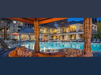 EasyRoommate US - 2bed/ 2 bath apartment for share in Elan at River apartments - San Jose, San Jose Area - $1,300 pcm