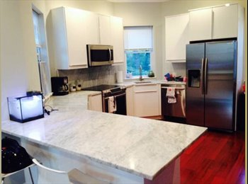 EasyRoommate US - Newlt renovated row house - Columbia Heights, Washington DC - $1,100 /mo