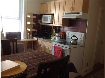 Aug 2016/$580 Room at University City, Philadelphia
