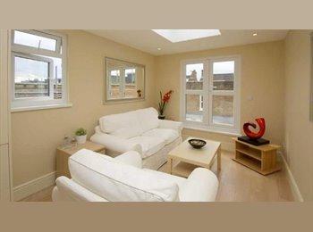 EasyRoommate US - two double bedroom flat - Ocean Lakes, Virginia Beach - $850 /mo