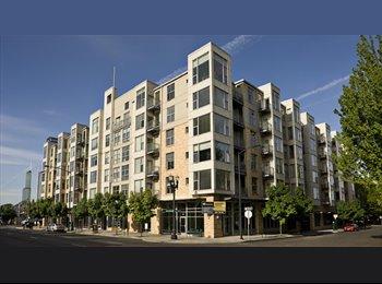 EasyRoommate US - Corner Unit in Middle of Portland - Downtown Portland, Portland Area - $900 /mo