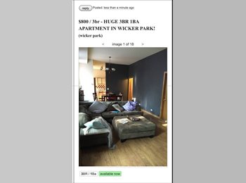 HUGE 3BR 1BA apartment in WICKER PARK $800/MO