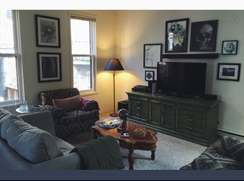 Looking for a roommate, Lincoln Park area