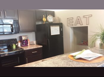 EasyRoommate US - $679 / 1br - 1000ft2 - Apartment near VUU, VCU, JSRCC,1bd/1bath *All utilities included* (Richmond)  - Richmond Downtown, Richmond - $679 /mo