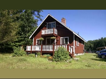 Country Roommate for Farm living - bring your horse too!