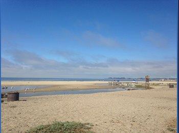 EasyRoommate US - Couple Blocks to Beautiful Beach, Furnished Apartment! - Santa Cruz, Monterey Bay - $1,500 /mo