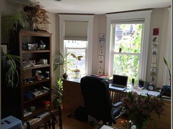 Rooms in Brookline Village