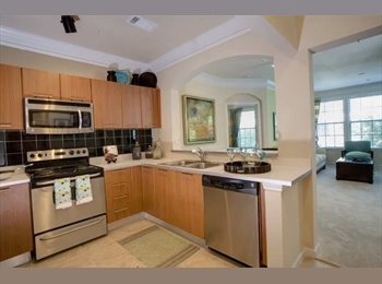 Room for rent; within walking distance of Buckhead...