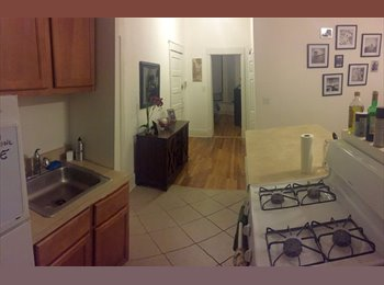 1br open in 2br Old Town Apt! (Above Brick's Pizza)