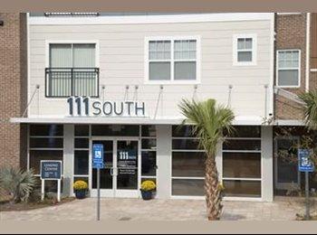 EasyRoommate US - 111 SOUTH APARTMENT ROOM AVAILABLE!!  - Savannah, Savannah - $380 /mo