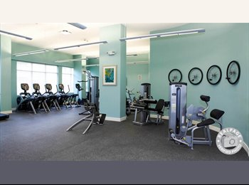 EasyRoommate US - Beautiful Luxury Harbor Point Residence  - Stamford, Stamford Area - $1,540 /mo