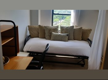 BRIGHT, CLEAN, SPACIOUS, COZY ROOM IN UPSCALE RIVERDALR