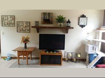 EasyRoommate US - Large room in 2bd apt - Flagstaff, Other-Arizona - $475 /mo