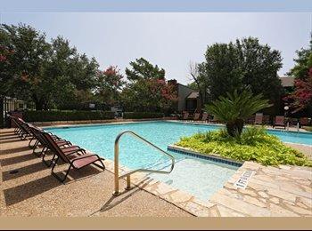 EasyRoommate US - Great Apartment in South Austin! - Galveston, Galveston - $800 /mo