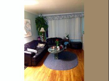 Room in 2 BR Garden Apt $850 all, Rockville Centre, NY
