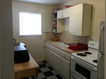 EasyRoommate US - zsafi - Southeast Quadrant, Albuquerque - $450 /mo