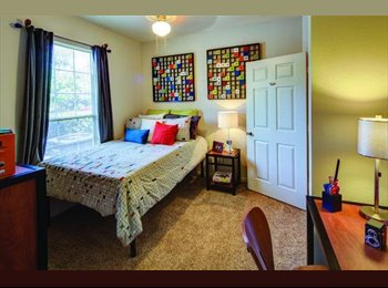 EasyRoommate US - room for rent in Norman, OK - Norman, Norman - $449 /mo
