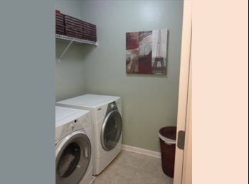 Need Clean Reliable Roommate