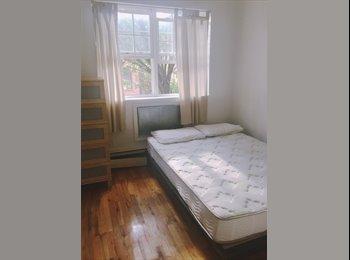 Sunny Room in Brooklyn