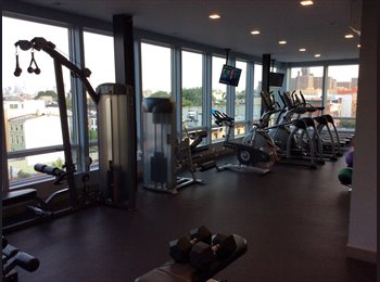Amazing apartment to share with GYM in the building