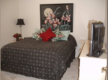 EasyRoommate US - Safety Harbor, FL  near Clearwater -share 4 BR, 2 bath with pool - West Tampa, Tampa - $800 /mo