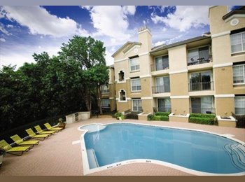 1BR/1BR Available in Beautiful Addison Apartment! Gorgeous...