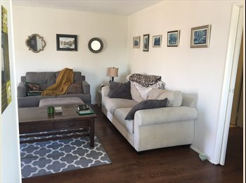 EasyRoommate US - Looking for a Roommate in PB - Pacific Beach, San Diego - $775 /mo