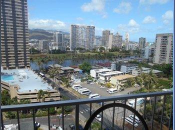 Clean 1 bdrm condo to share in Waikiki