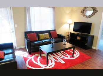EasyRoommate US - The U Raleigh- 4 bedroom 4 bath - Raleigh, Raleigh - $550 /mo